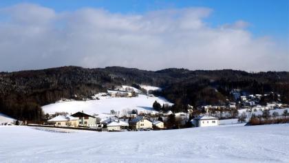Hackl am Berg mit Kürnberg vom Güterweg