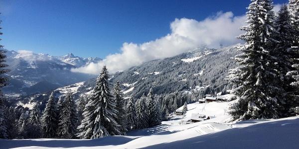 Ausblick vom Winterwanderweg
