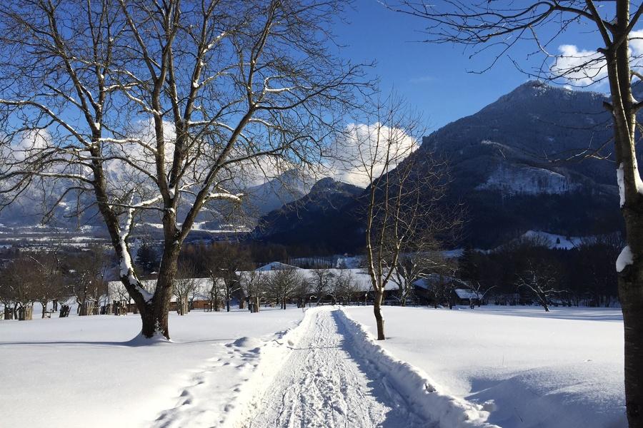 Rodeln von Brannenburg aus: Auf den Breitenberg