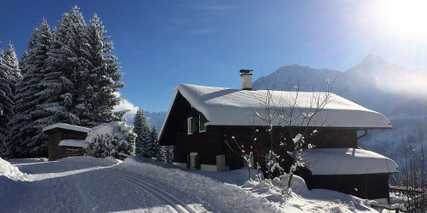 Schneeschuhroute entlang der Panoramaloipe