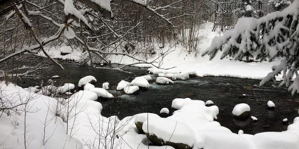 idyllische Winterlandschaft an der Ill