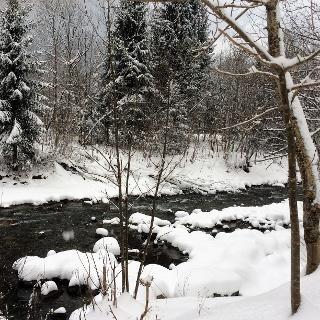Winterwandern der Ill entlang