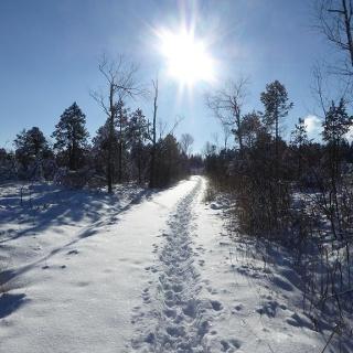 Winterwanderweg Eisenharz