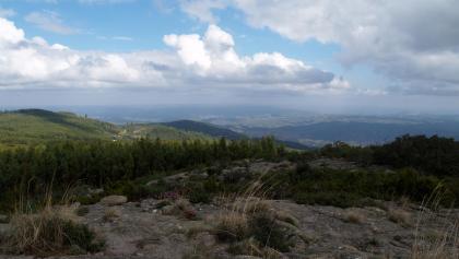 Auf dem Gipfel des Picota