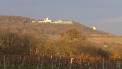 Kahlenberg und Leopoldsberg