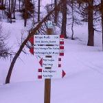 Val Venegia – Baita Segantini