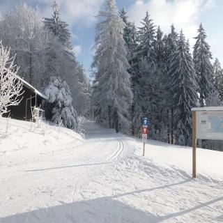 Loipenstart Diensthütte Grandsberg