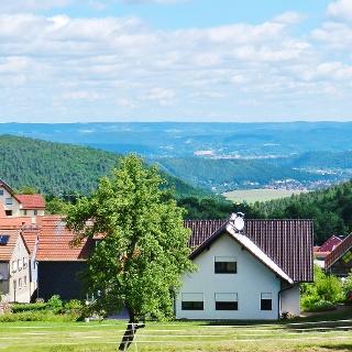 Blick von Oberwirbach auf die Heidecksburg in Rudolstadt