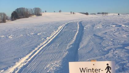 Winterwanderweg 2017