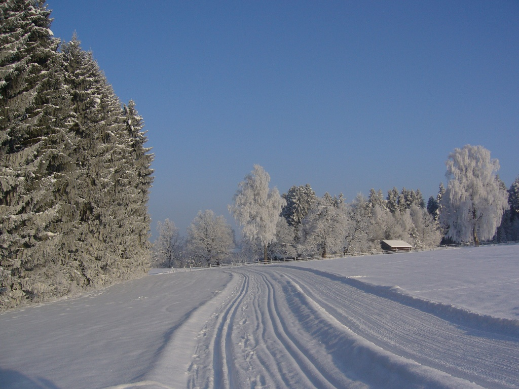 Bergwiesenrunde ()