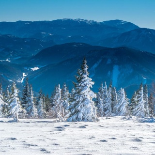 Zauberhafte Winterlandschaft am Gipfelplateau der Reisalpe