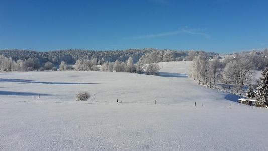 Purer Winter