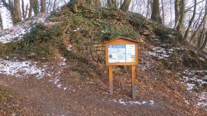 Ein kleiner Hügel sind die Reste der Hoheneck.