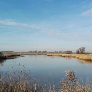 Wasserflächen und Sielzüge