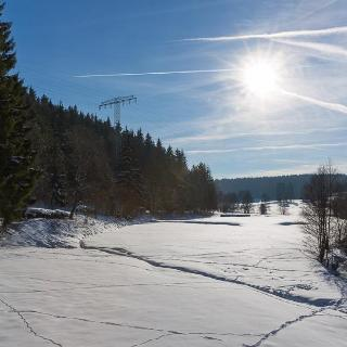Blick ins Dammbachtal
