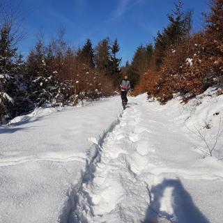 Verschneiter Weg bei Kohlstatt