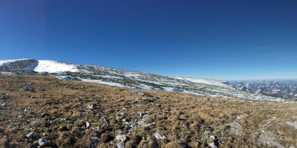 am rücken zwischen bärengrube und kloibentörl. höhe 1820 m
