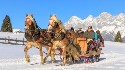 Via the meadows of Rohrmooser Frei in the horse-drawn-sleigh - the Dachstein massif in the backdrop