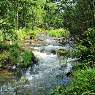 De gouden rivier Montenau