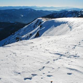 Auf der Gipfelwechte der Schauerwand