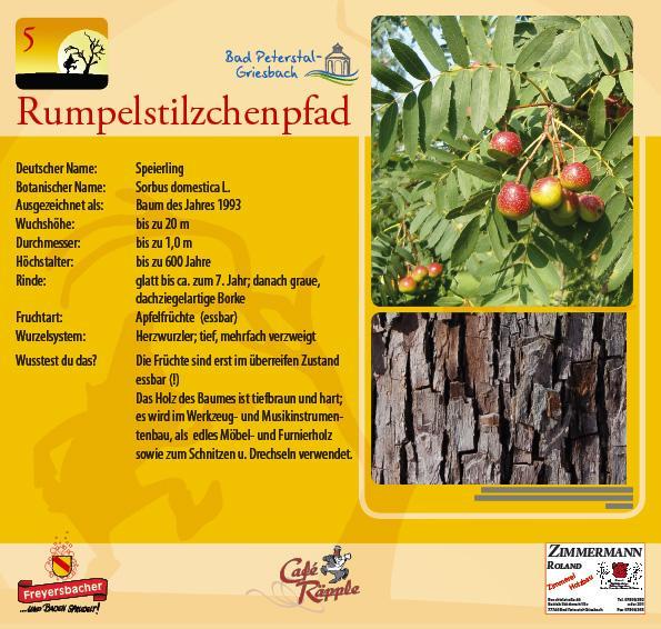 Familientour: Der Rumpelstilzchenpfad in Bad Peterstal-Griesbach