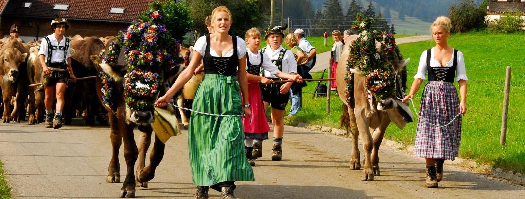 Viehscheid in Ofterschwang-Gunzesried