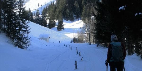 Gaisberg aus dem Lengfilzenbachtal