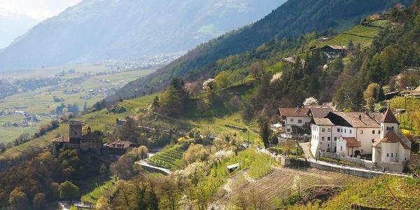 Burgweg - Ochsentodweg - Schloss Tirol