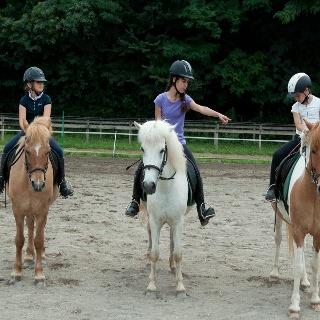 Riding stable Alps Coliseum