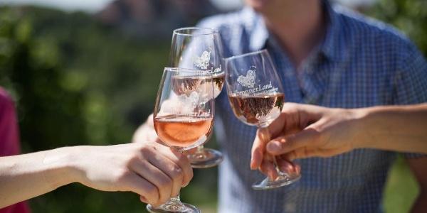 Weingenuss im HeilbronnerLand