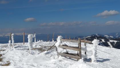Schneeschuhwandern auf den Speikkogel