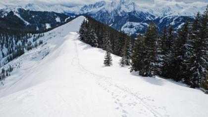 Der Kamm unter dem Vöttleck – im Hintergrund der Große Griesstein, ganz rechts der Triebenkogel
