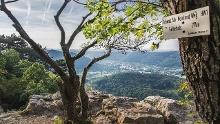 Albsteig (HW1) – Etappe 7 – Von Bläsiberg nach Owen