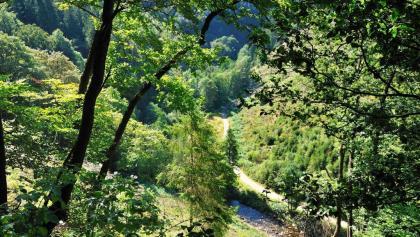 Vallées et crêtes Xhoffraix