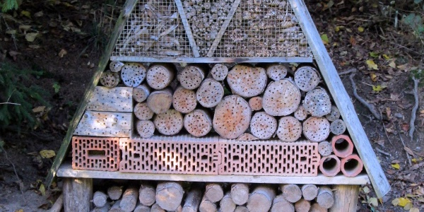 Insektenhotel am Motorikpfad Hasenkammer