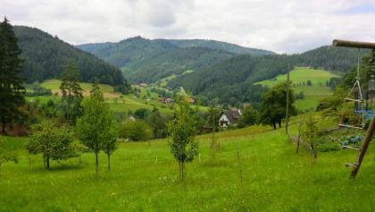 Blick vom Ebersbach aufs Gutachtal