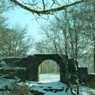 Ruine Hofen Grabenstetten