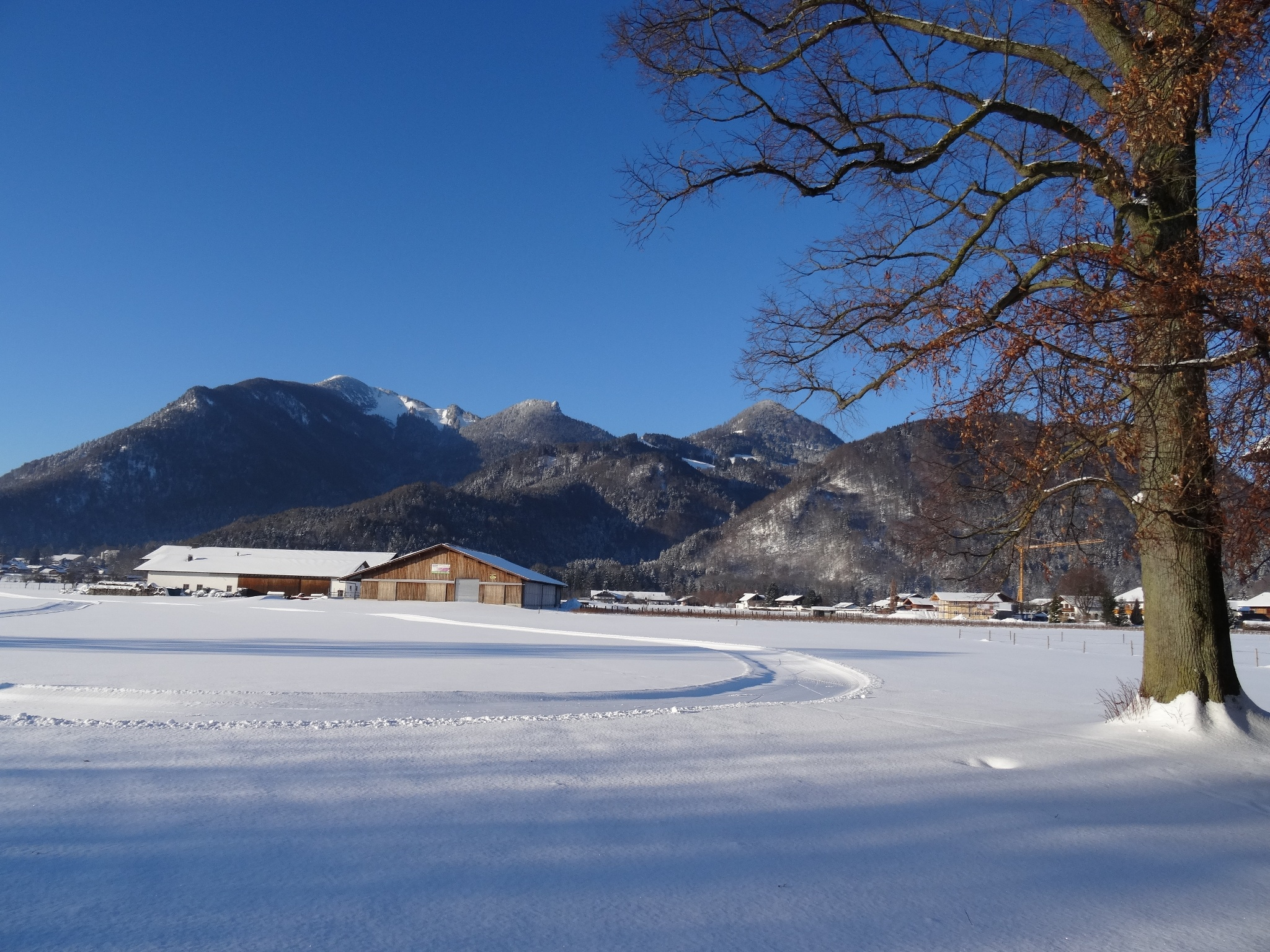 Bergwiesen Loipe Grassau