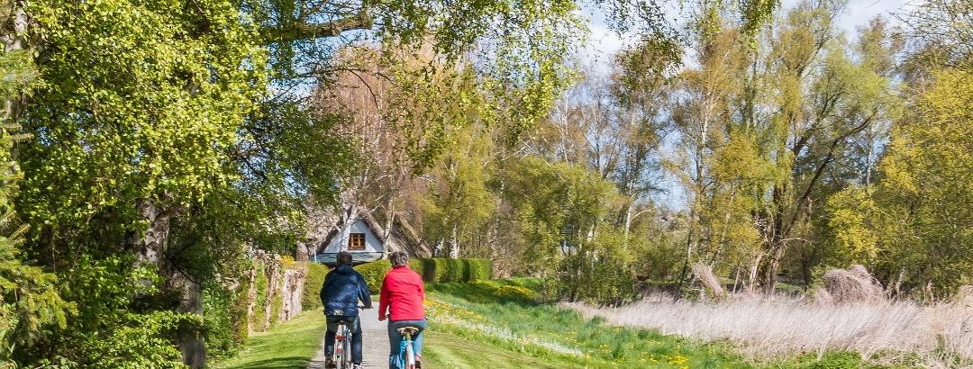 Radfahren Ostseebad Ahrenshoop