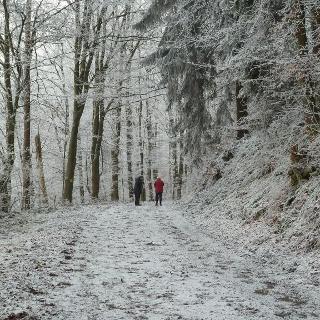 Start in Kreuztal