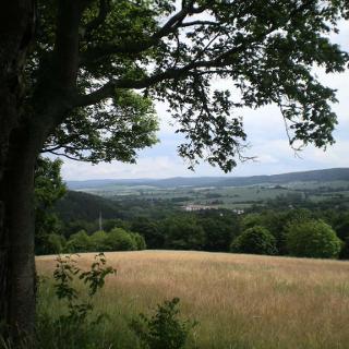 Blick auf Bad Gandersheim