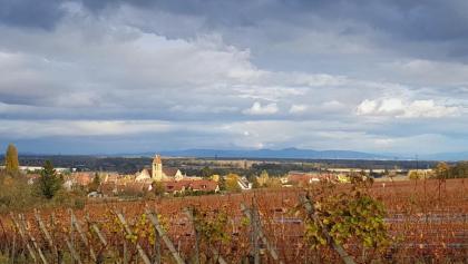Blick Über die Weinberge nach Wettolsheim
