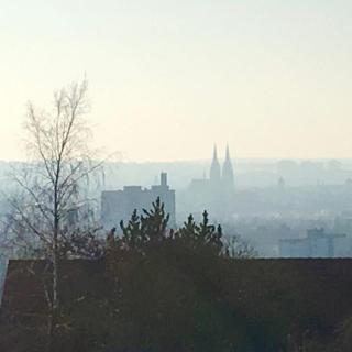 Blick v. Brandlberg nach Regensburg