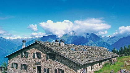 Naturno alpine pasture