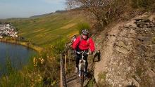 Mountainbikeroute 1 bei Schweich, Bekond, Mehring