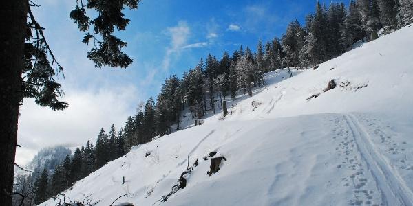 Ski-Aufstiegsroute auf den Herrenboden im oberen Aschauergraben