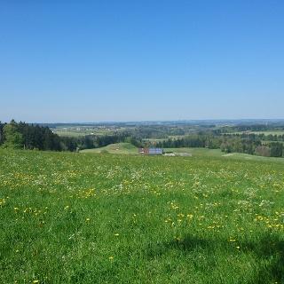 Landschaft bei Beuren