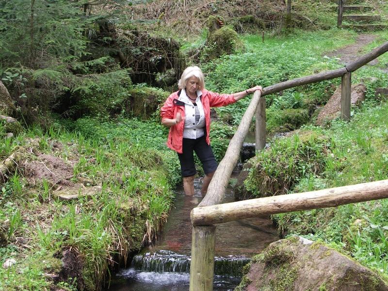 7 Luchsbrunnen-Wanderung, Wanderglück Schömberg