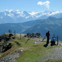 Saalachtaler Höhenweg. Die Glocknergruppe im Visier