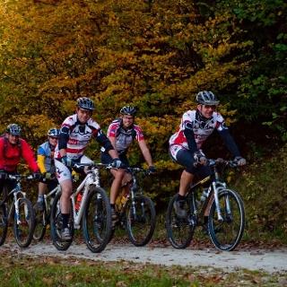Mountainbiker im Meulenwald